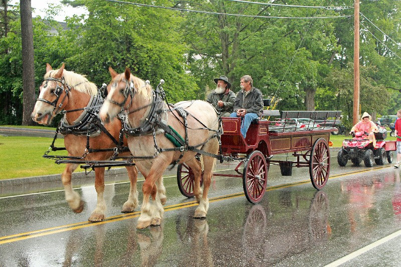 Belgians Horses (Jim Fitch ) Alumni riding members staying dry
