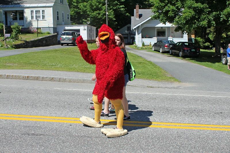 Stevens Mascot