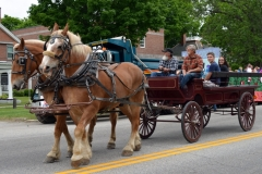 Two horses pull a carriage on Broad Street at the starting point of the 2016 Stevens Alumni parade. (1/200 sec., F7.1, automatic-no flash mode, ISO 200, 32mm).Photo: Stephen C. Fitch June 11, 2016 10:35 AM
